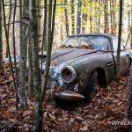 45年間森の中に放置されていたアストンマーティンDB4ザガートが発見。競売へ
