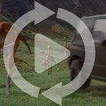 要永久保存動画登場。ある男が自分のスズキ・エスクードを売るためにプロモ動画を作る