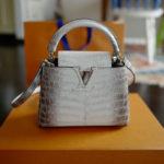 ルイ・ヴィトンの限定バッグ「カプシーヌ・サハラ」