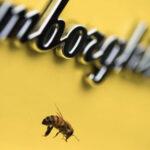 ランボルギーニが2016年から開始した養蜂事業を拡大中